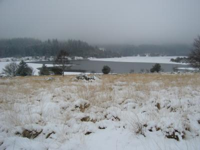 Another view of Fernworthy